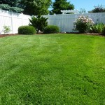 Lawn Renovations in Revere, MA